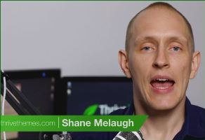 Shane-Melaugh-review-thrive-leads
